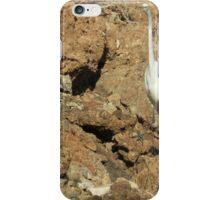 Havasu Heron iPhone Case/Skin