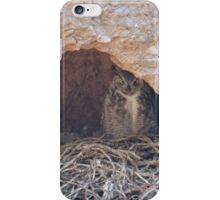 Nesting Owl, Lake Havasu iPhone Case/Skin
