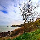 Saie Bay II by Mark Bowden