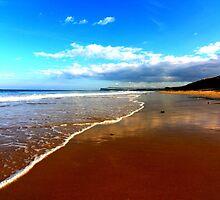 On the beach, Marske to Saltburn. by Ian Alex Blease