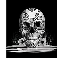 Pulled sugar, melting sugar skull  Photographic Print