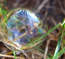"""See The """"Girl"""" Inside The Bubble by Laurie Puglia"""