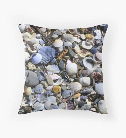 Sea Shells at Burleigh Heads Beach,Cushion Throw Pillow
