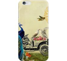 Feathered Friends in France iPhone Case/Skin