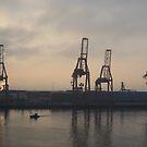Container Cranes on Ensenada by Elizabeth  Lilja