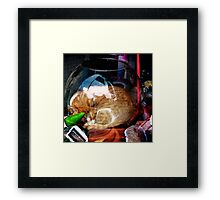 Ironic Cat Framed Print