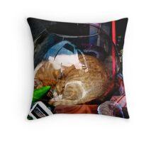 Ironic Cat Throw Pillow