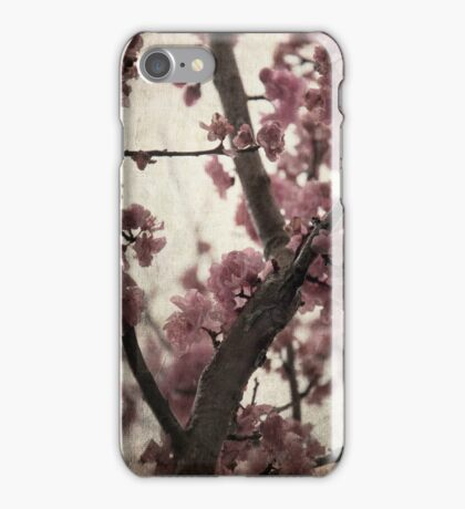 Spring Cherry Tree Blossom  iPhone Case/Skin