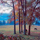 Little Timber Ranch by John Rivera