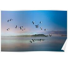 Flight of the Snow Geese Poster