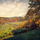The Pastures by John Rivera
