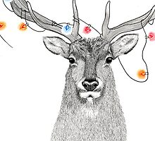 Elk with colourful lights around its antlers by Kelsey Emblow