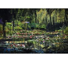 Monet's Lily Pond Photographic Print