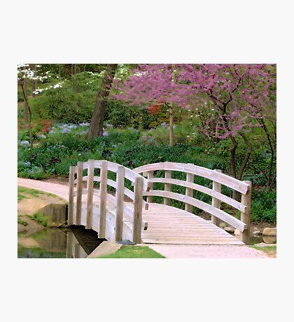 Spring Bridge Photographic Print