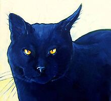 Black Cat Stare by Carole Chapla