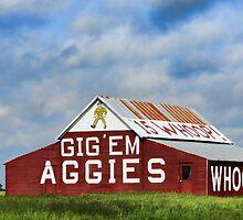 Aggie Barn by Stephen Stookey