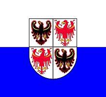 Trentino-Alto Adige/Südtirol Region of Italy  by abbeyz71
