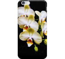 Stair Steps - Beautiful Orchids iPhone Case/Skin
