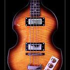 Epiphone Viola Bass Guitar by koping