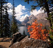 North Jenny Lake, Grand Teton National Park by KellyHeaton