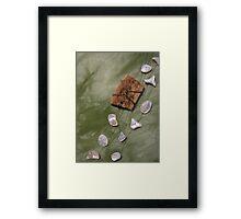 Inner Bone and Outer Shell Framed Print