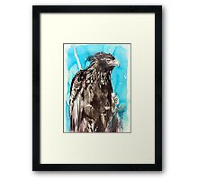 wedge-tail Framed Print