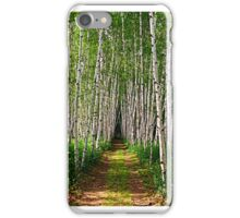 White Birch Path iPhone Case/Skin