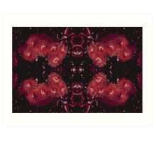 Corymbia mirror dark Art Print