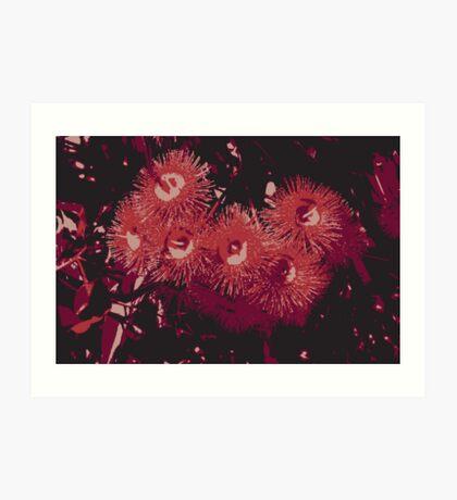 Corymbia dark single Art Print