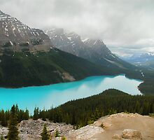 Canada's Peyto Lake by Dyle Warren