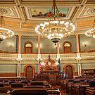 Kansas Senate 2013 by Paul Danger Kile