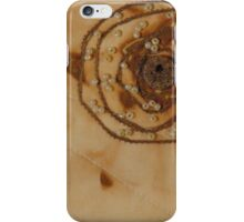 Rusted Reverie iPhone Case/Skin