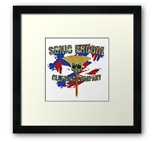 Sonic Broom Framed Print