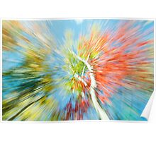 Vibrant nature abstract zoom blur Poster