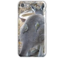 'WHAT A CATCH! A pair of Brown Headed Honeyeaters on Joeys back. Sth. Australia. iPhone Case/Skin