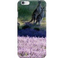 Evening in the Lavender  iPhone Case/Skin