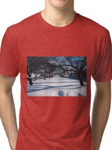 NYC Park in the Snow Tri-blend T-Shirt