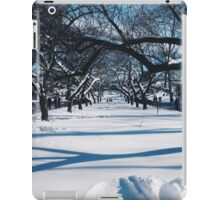 NYC Park in the Snow iPad Case/Skin
