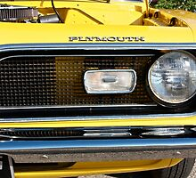 Plymouth Barracuda by Linda Bianic