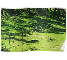 Fence on a Farm Poster