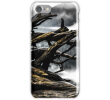 Roots in the Fog iPhone Case/Skin