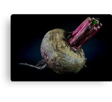 Beetroot #1 - The Raw Foods Series Canvas Print