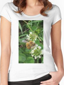 Spring Bee Women's Fitted Scoop T-Shirt