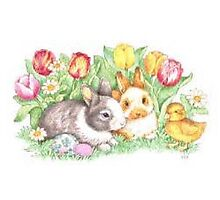 Bunnies and Chick Photographic Print