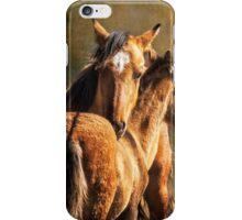 Brotherly Love - Pryor Mustangs iPhone Case/Skin