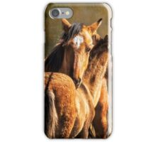 Brotherly Love - Pryor Mustangs iPhone Case/Skin