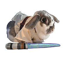 Jedi Bunny  Photographic Print