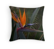 Magnificence: Bird of Paradise Throw Pillow