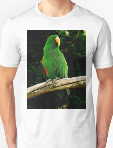 Eclectus Parrot - (Eclectus roratus) T-Shirt