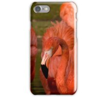 Simply Red.......Well.....Almost.... iPhone Case/Skin